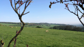 Sheepscombe Byre holiday cottage: towards Little Brockhampton